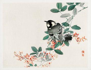 Schwarzkappenmeise von Kōno Bairei von Studio POPPY