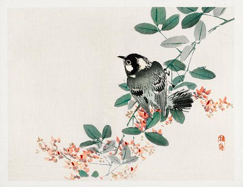 Black-capped chickadee door Kōno Bairei