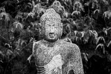 Boeddha van Remke Kwant