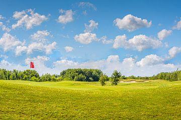 Let's play golf van Patrick Herzberg