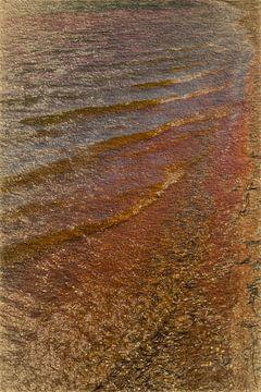 De Bronzen Waterkant van Robert Wiggers
