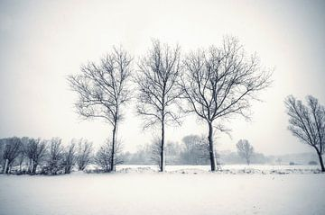 Sneeuw - Duotone sur Angelique Brunas