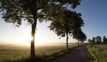 Nebel und Morgensonne an einem Sommermorgen auf dem Weg zum Wasserturm von Werkhoven in der Region K von Arthur Puls Photography