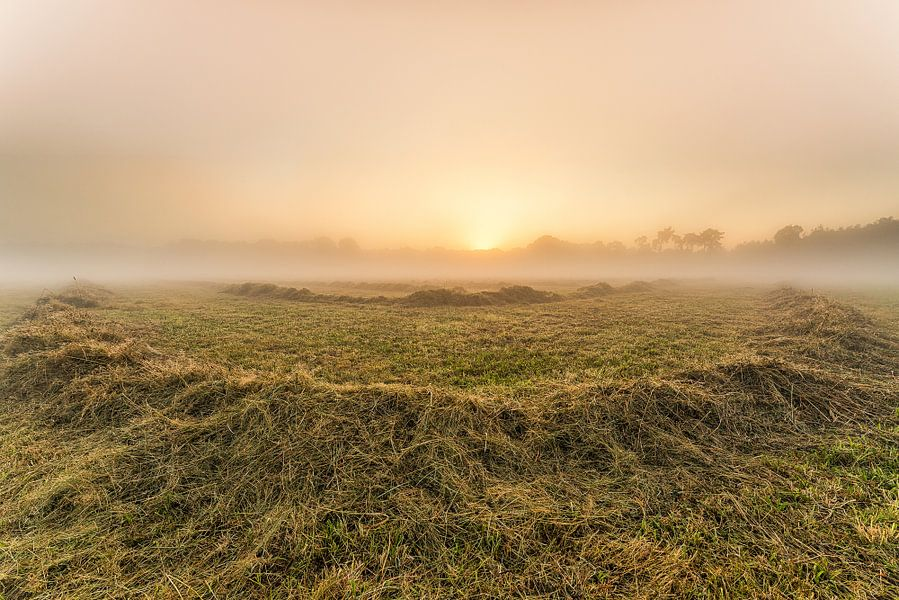 Sunrise the Netherlands van Davy Sleijster