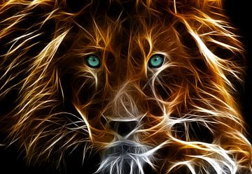 Glowing lion van Bert Hooijer