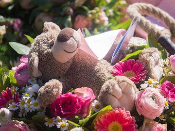 Liggende beer tussen de bloemen van Andy Midside