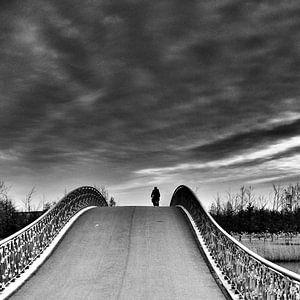 Hoge brug Maximapark van