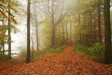 Landschap Herfst 3  van Joop de Lange