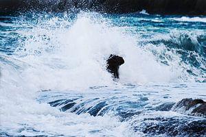 Waves II