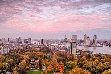 Rotterdam: de stad, de lucht en het Park van Frans Blok