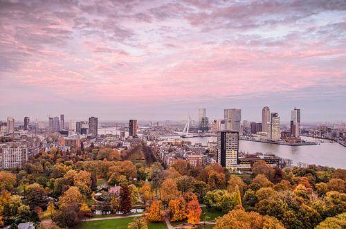 Rotterdam: de stad, de lucht en het Park van