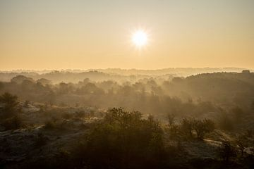 Sonnenaufgang in den Dünen von Tomas Grootveld