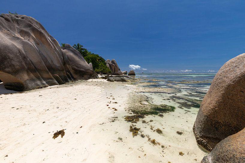 Strand auf der Seychellen Insel La Digue von Reiner Conrad