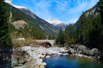 Zwitserse bergen met water van Malissa Verhoef