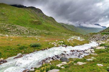 Rivier door het dal in Zwitserland van Dennis van de Water