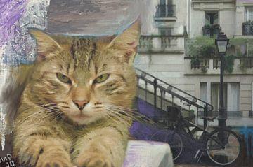 parijs is de stad voor katten van MD JO