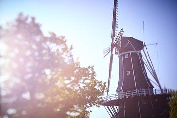 Windmolen de Adriaan Haarlem in ochtendlicht van