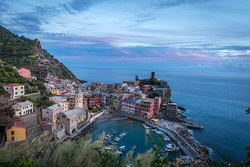 Vernazza,Italië van Nico  Calandra