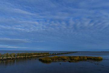 Ansicht des Wattenmeeres bei Paesens-Moddergat, Friesland von Bernard van Zwol