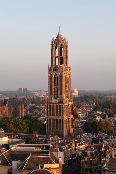 Utrechtse Domtoren in het strijklicht van de vroege avond vastgelegd vanaf de Neudeflat. van De Utrechtse Grachten