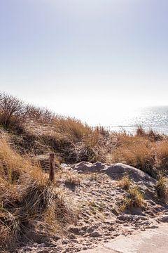 Bijna op het strand van Manon van Bochove