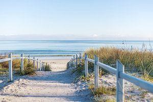 Ein Weg an die Ostseeküste