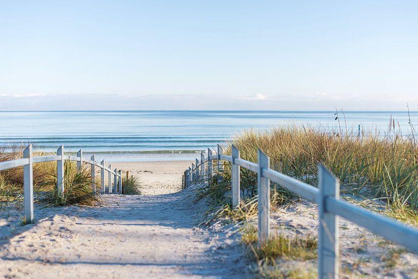 Ein Weg an die Ostseeküste von Florian Kunde