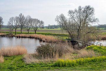 Wasserreiche holländische Landschaft im Frühjahr von Ruud Morijn