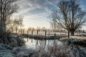 De zotte morgen in Zwalm van Alain Gysels