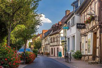 Fachwerkhäuser in der Altstadt Hofheim am Taunus von Christian Müringer