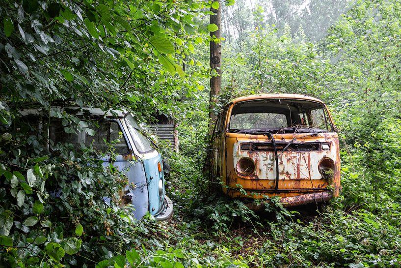 Old and Rusty van William Linders