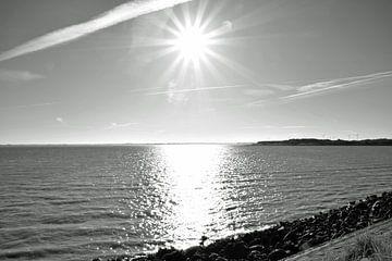 Wunderschöne schwarz-weiße Landschaft der seeländischen Gewässer im Naturschutzgebiet auf Neeltje-Ja von Robin Verhoef