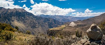 Weids panorama van de Colca Canyon, Peru van Rietje Bulthuis