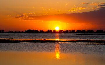 Zonsondergang in Chobe national park, Botswana  van Christel Nouwens- Lambers
