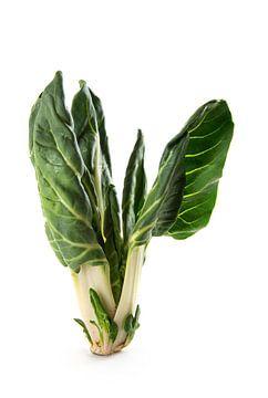 Bette à carde ou palétuvier isolé sur fond blanc, plante potagère biologique brute, fraîche du march sur Maren Winter