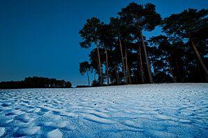 Strand bei Nacht Henschotermeer von Remco Artz