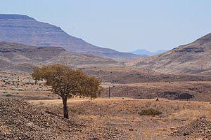 Au milieu de nulle part en Namibie