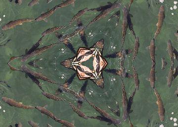 Fischen in Formation von Greta Lipman