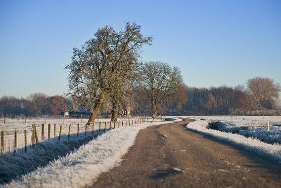 winter bij de buren van Mariska Hofman