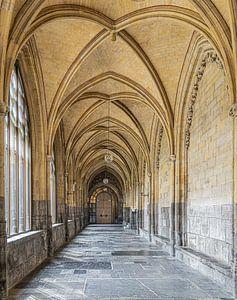 Basiliek Sint Servaas in Maastricht van Aad de Vogel