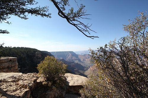 Uitzicht over de Grand Canyon van