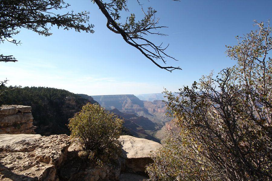 Uitzicht over de Grand Canyon