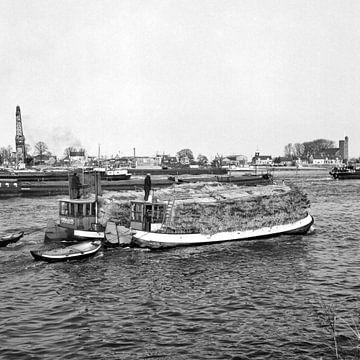 Rietbootjes von Dordrecht van Vroeger