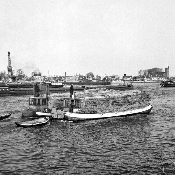 Rietbootjes van Dordrecht van Vroeger