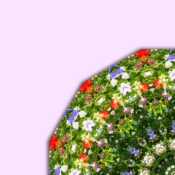 Wildflower, floral mandala-style van Barbara Hilmer-Schroeer