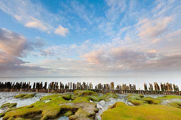 Wattenmeer Moddergat von Ron Buist
