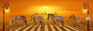 Benutze die Zebrastreifen