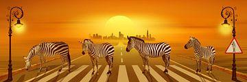 Benutze die Zebrastreifen von Monika Jüngling