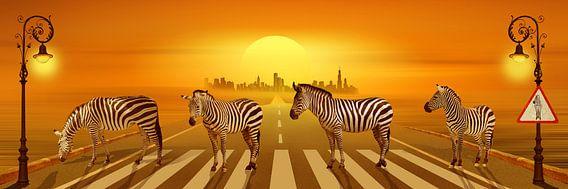 Gebruik het zebrapad