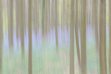 Märchenblauer Wald von Barbara Brolsma